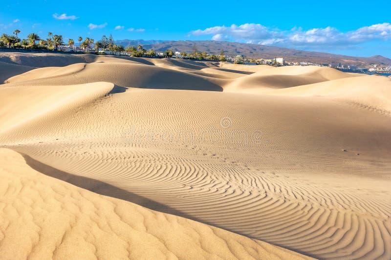 Nationaal park van Maspalomas-zandduinen Gran Canaria, Kanarie isl royalty-vrije stock afbeeldingen