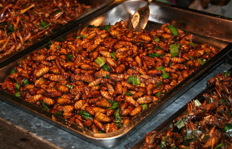National Asian cuisine insects after grilling. In oil stock photo