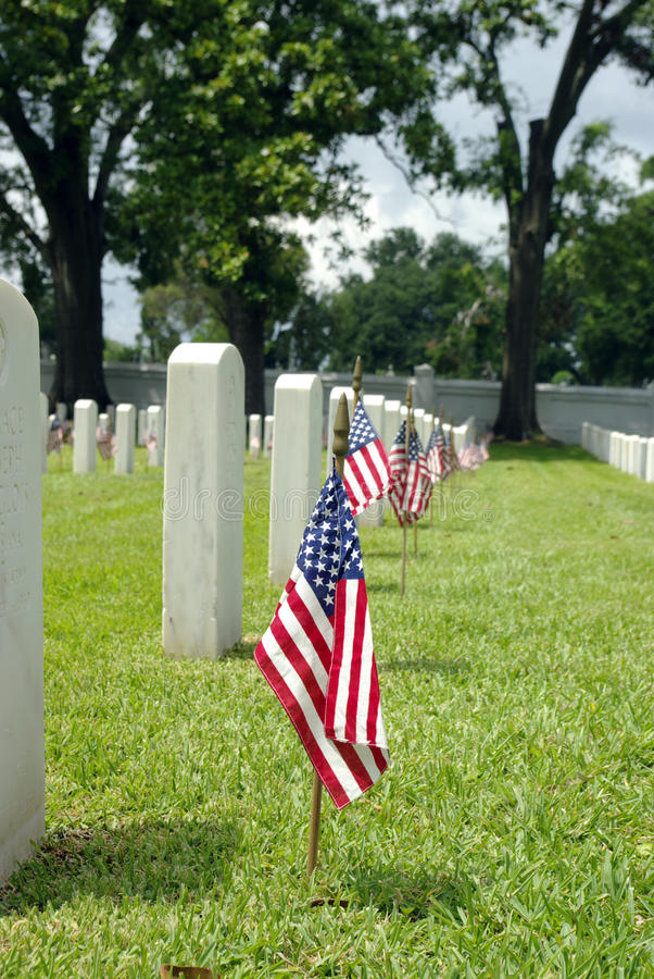 Free National Cemetery Flag Royalty Free Stock Image - 9490956