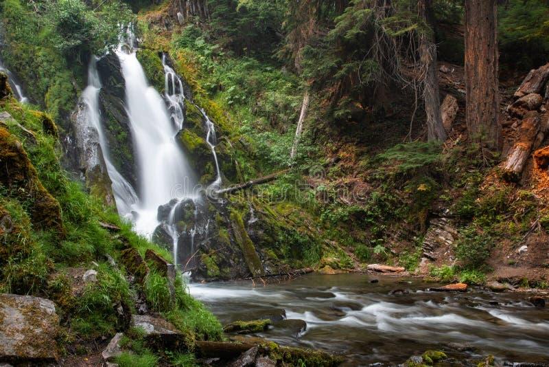 National Creek Falls. In The Rogue-Siskiyon National Forest Near Tiller, Oregon stock photos