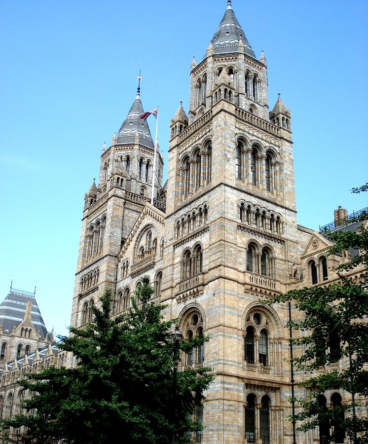 National History Museum London. The Natural History Museum in London is a museum exhibiting some 80 million items within five main collections: botany stock photo