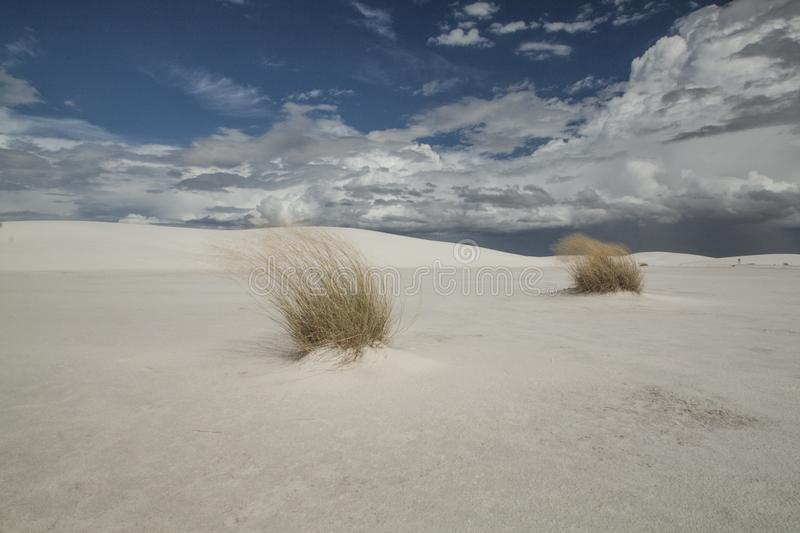 White Sands, National Monument, New Mexico, USA. stock images