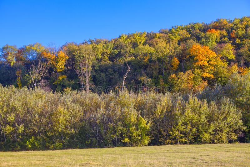 Trees in autumn. National park with colorful trees in the autumn stock photos