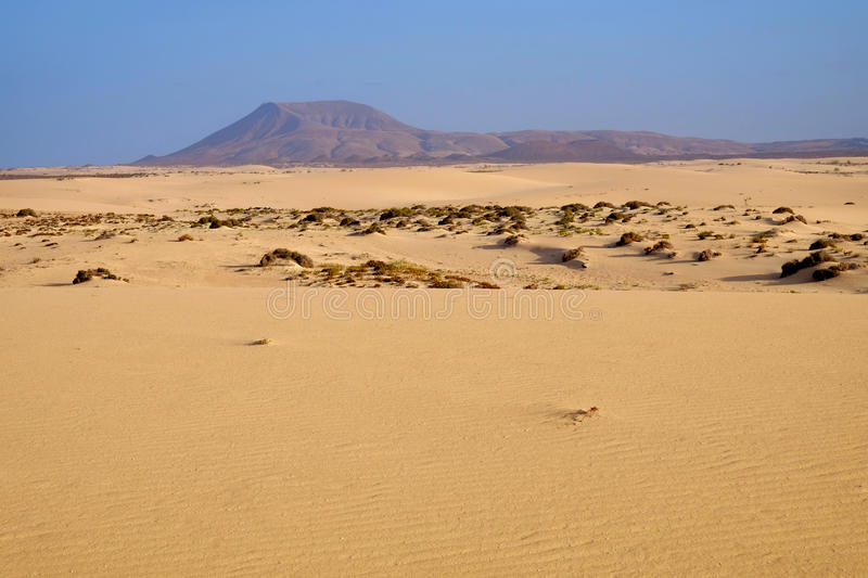National park Corralejo on Fuerteventura, Spain. Landscape with sand dune, mountains and blue sky in the national park Corralejo, La Oliva, the Canary Island stock photos