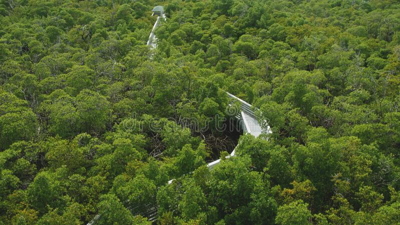 National Park in Miami stock image