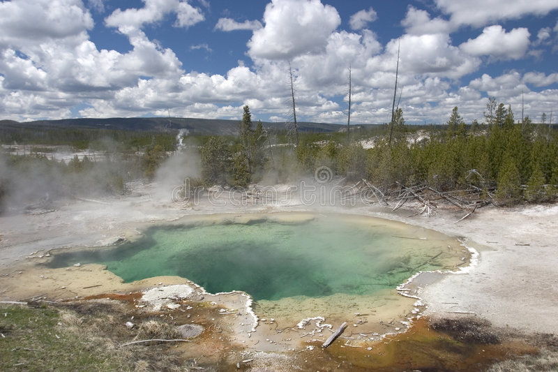 national park naturalne gorące basen skacze nas Yellowstone Wyoming obraz royalty free