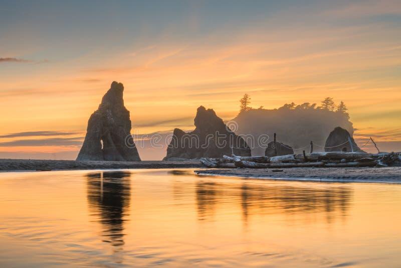 national park olimpijski Washington usa fotografia stock