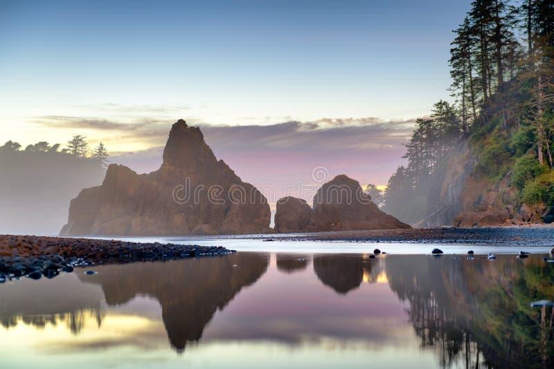 national park olimpijski Washington usa obrazy stock