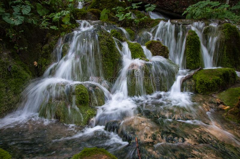 Wild stream, Plitvice Lakes, National Park, Forest, Croatia. National park of Plitvice Lakes situated in Northern Croatia. Picture was taken during summer of stock images