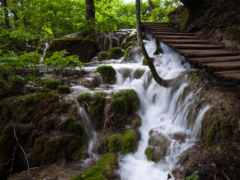 Wild stream, Plitvice Lakes, National Park, Forest, Croatia. National park of Plitvice Lakes situated in Northern Croatia. Picture was taken during summer of royalty free stock image
