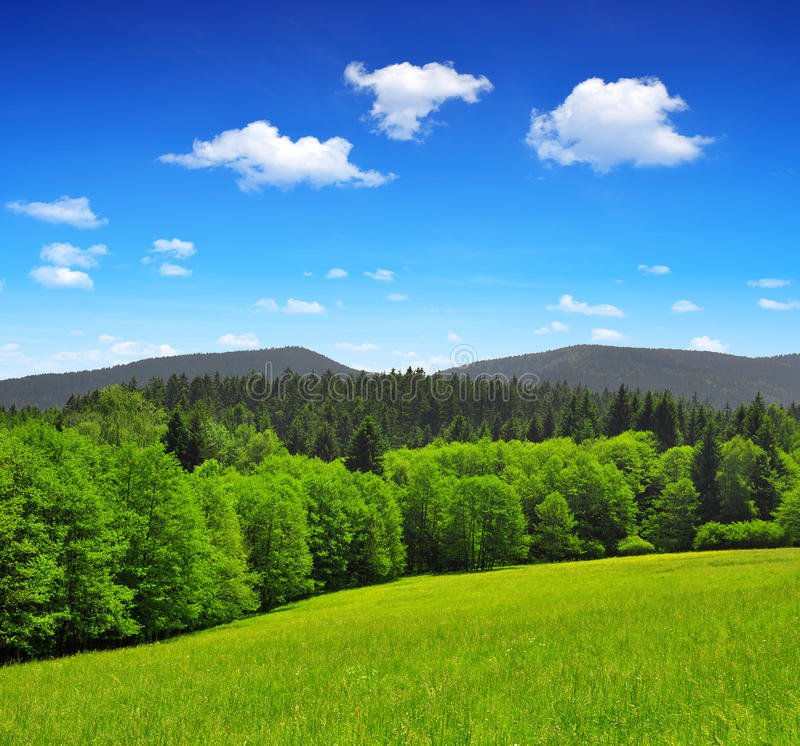 Download National Park Sumava Royalty Free Stock Photography - Image: 35148527