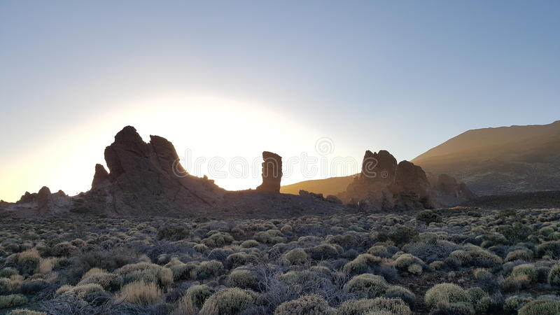 National Park Teneriffa stock images