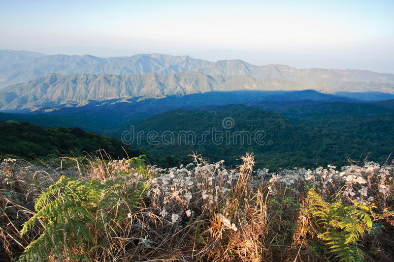National park of Thailand - Doi pha hom pok stock image