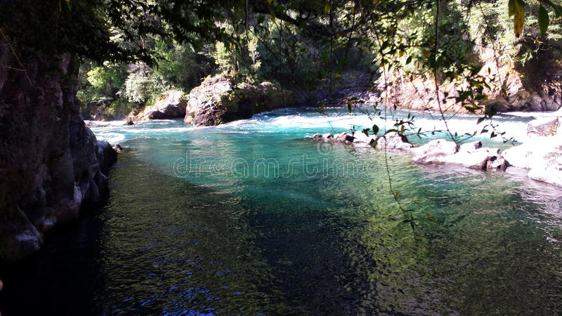 National Reserve Huilo Huilos - Chile stockfoto