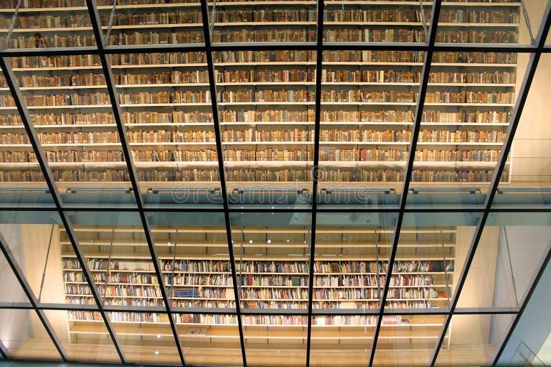 Nationalbibliothek von Lettland, Riga, Lettland lizenzfreie stockbilder