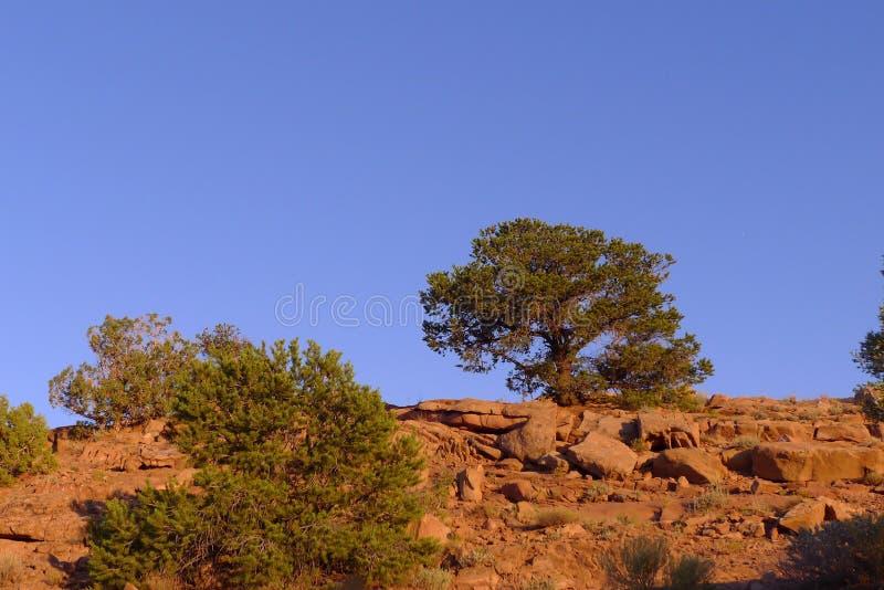 Nationaldenkmal Canyon De Chelly stockfotografie