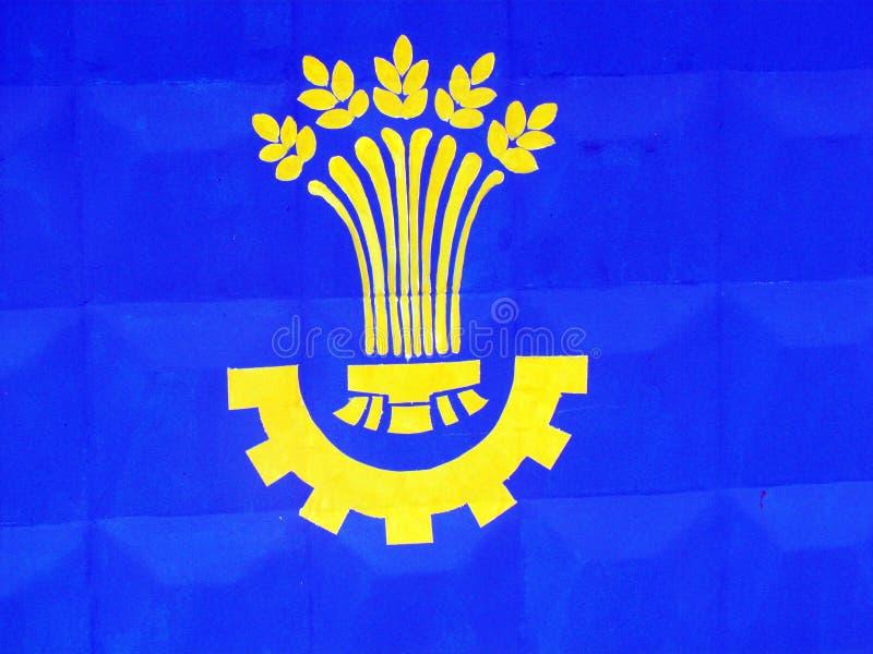 Nationale Sonderzeichen und Flaggen von Bezirken von Poltava-Region lizenzfreie stockbilder