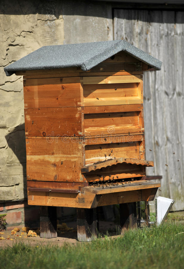 Nationaler Bienenstock stockbilder