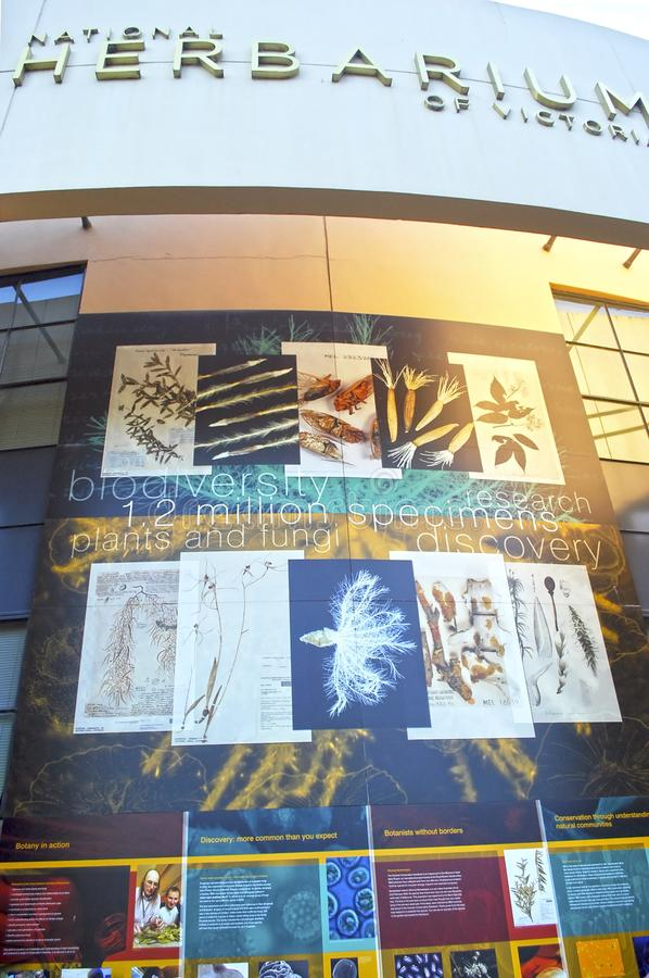 Nationaler Herbarium von Victoria Außendetail errichtend Polarisierter Blick lizenzfreie stockfotos