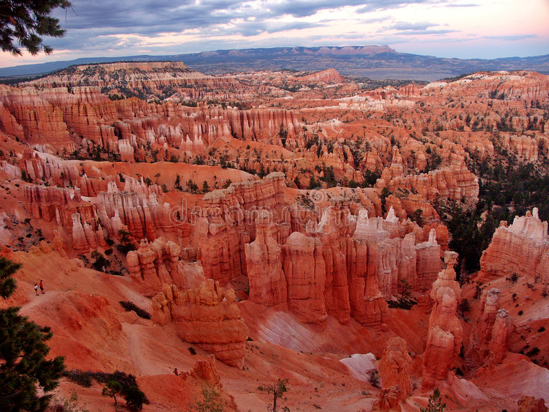 Nationalpark der Bryce Schlucht stockbild