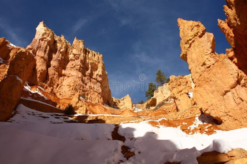 Nationalpark der Bryce Schlucht im Winter, Utah, USA stockbild