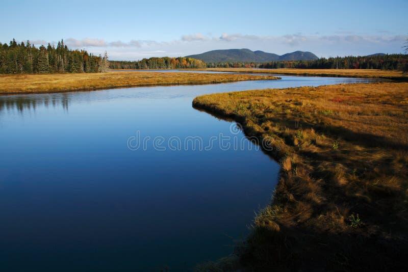 nationalpark för acadiabäckmarshall fotografering för bildbyråer