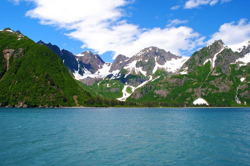 nationalpark för alaska fjordskenai arkivfoto