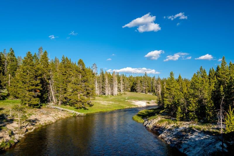 Nationalpark för Firehole flod, Yellowstone, Wyoming royaltyfri foto