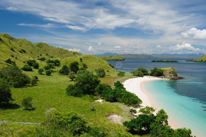 nationalpark för floresindonesia komodo royaltyfri bild