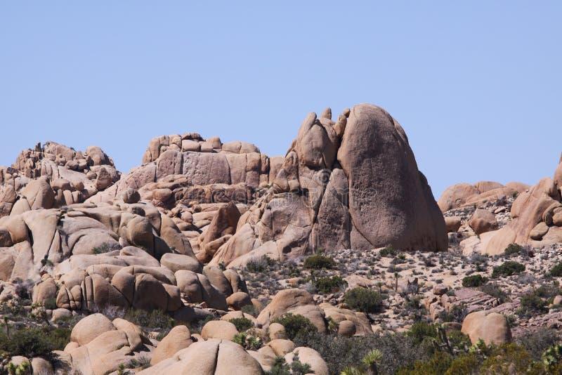 Nationalpark för Joshua träd, Kalifornien, Förenta staterna royaltyfria bilder