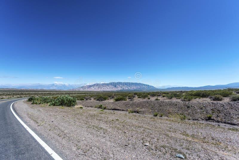 Nationalpark för Los Cardones i Salta, Argentina arkivbilder