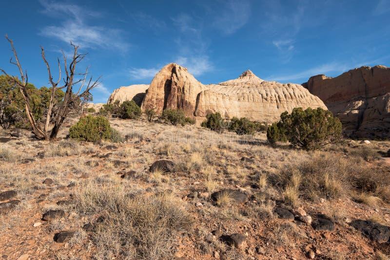 Nationalpark f?r Navajokupolhuvudrev, Utah royaltyfri foto
