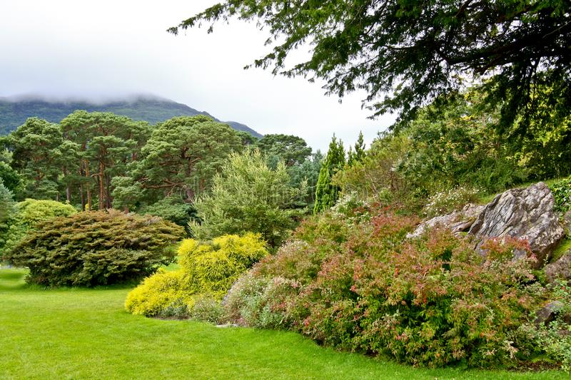 Nationalpark Gärten Muckross Killarney, Irland lizenzfreies stockfoto