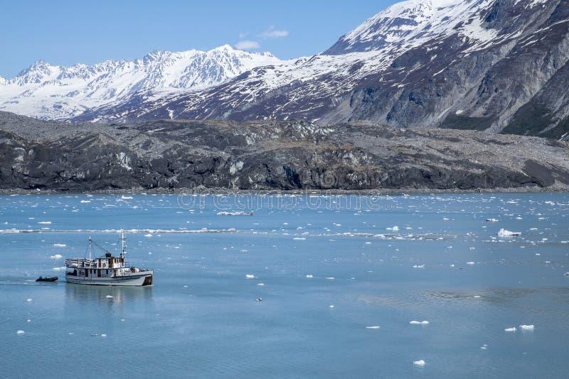 Nationalpark #5 Glacier Bays stockfotos