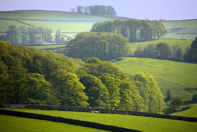Nationalpark Höchstbezirkes des England-Derbyshire stockfoto