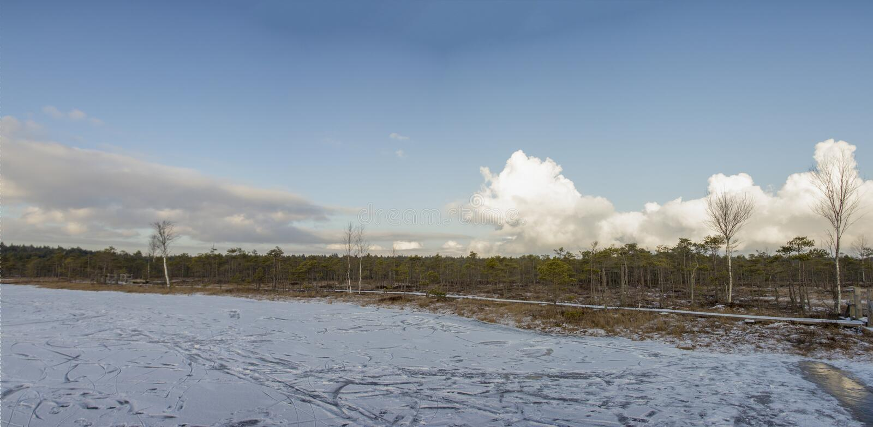 Nationalpark Lettland Kemeri im Winter stockfoto