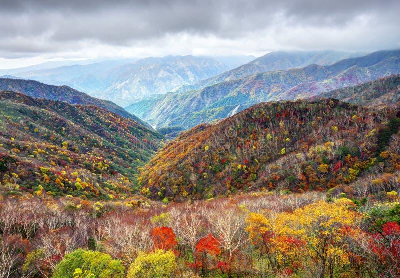 Nationalpark Nikko lizenzfreie stockbilder