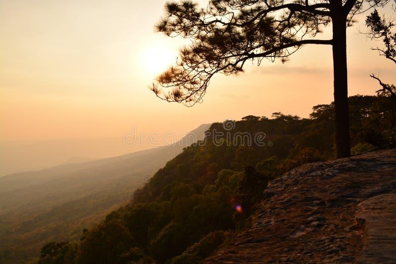 Nationalpark Phu Kradueng stockbilder
