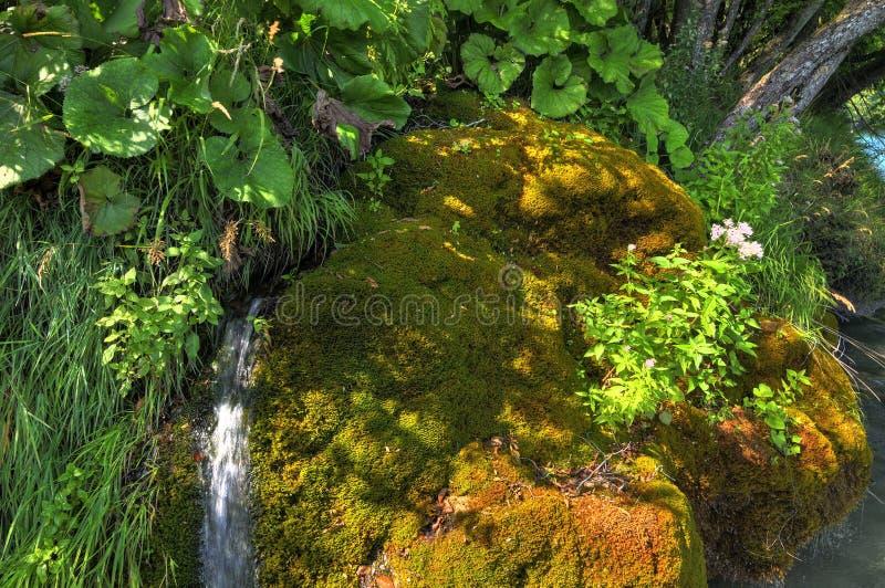 Nationalpark Plitvice stockfoto