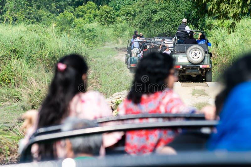 Nationalpark Rajasthan Indien Fahrzeug-Innenansicht Ranthambore Gruppe von zu erforschen Touristen Dschungel-Safari Visitors-Eint stockfoto