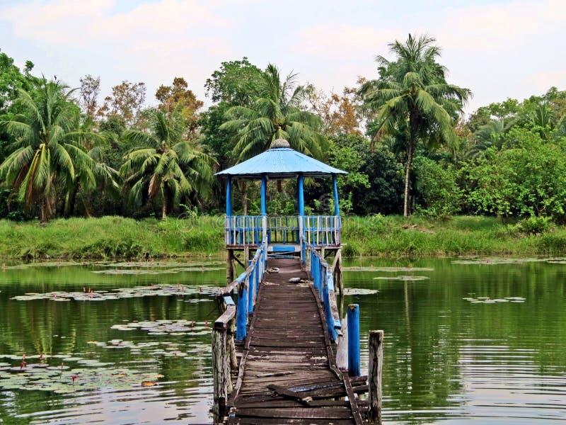 Nationalpark Sundarbans, Bangladesch lizenzfreies stockfoto