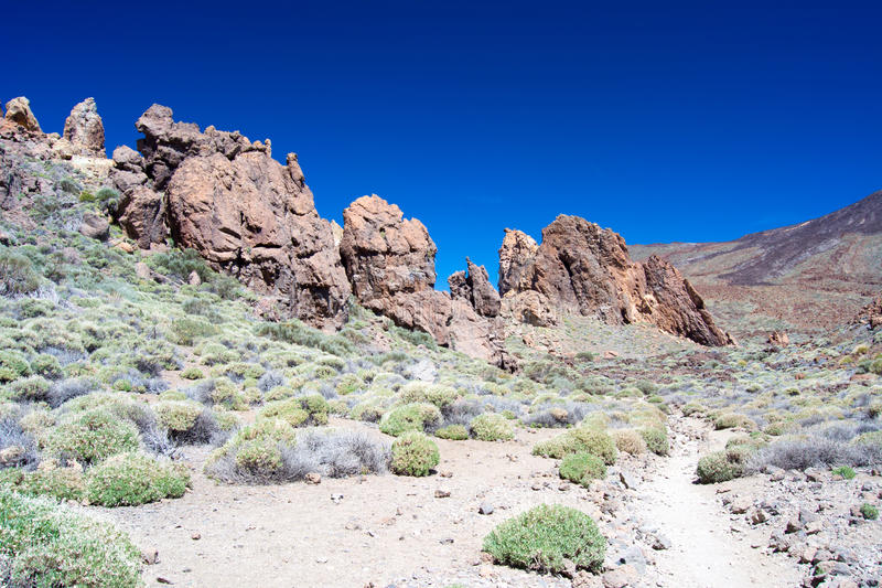 Nationalpark Teide royaltyfri foto