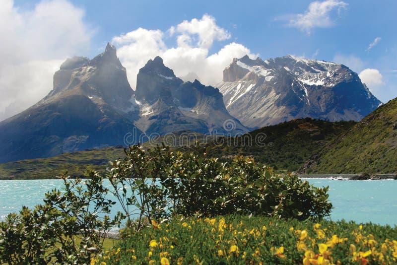 Nationalpark Torresdel Paine lizenzfreie stockbilder