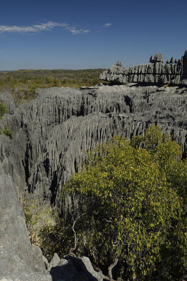 Nationalpark Tsingy de Bemaraha, Madagaskar stockfoto