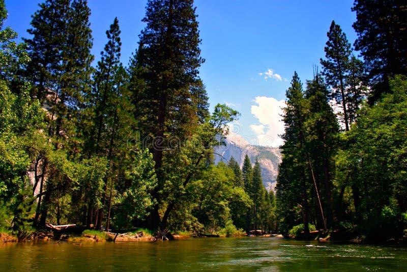 nationalpark USA yosemite royaltyfri foto