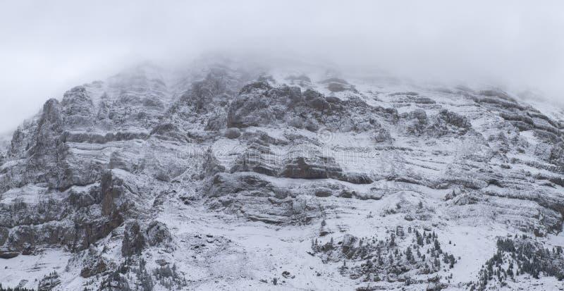 Download Nationalpark Von Cadi - Moixero Stockbild - Bild von wald, land: 27732403