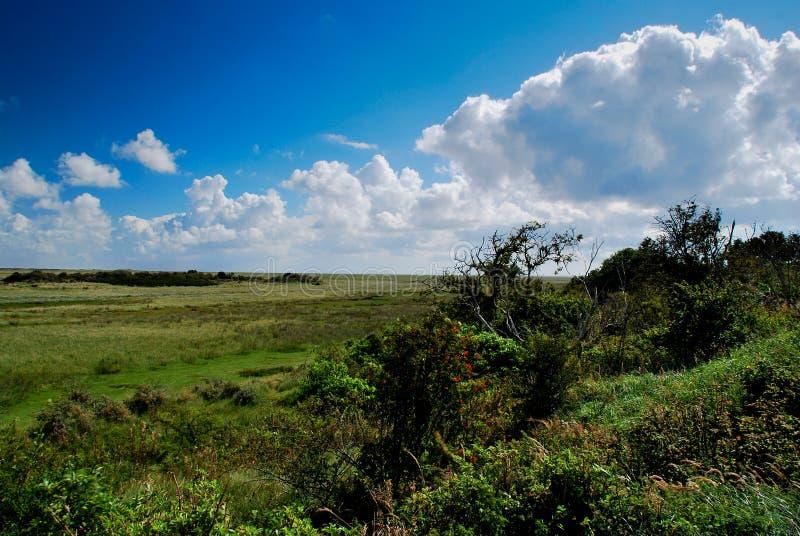 Nationalpark waddenzee Schiermonnikoog lizenzfreie stockfotos