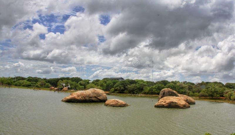 Nationalpark Yala für wild lebende Tiere in Sri Lanka lizenzfreie stockfotografie