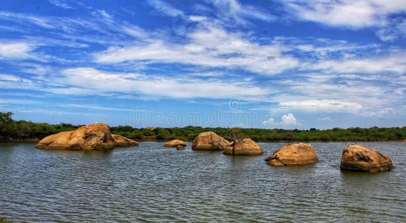 Nationalpark Yala für wild lebende Tiere in Sri Lanka lizenzfreie stockfotos