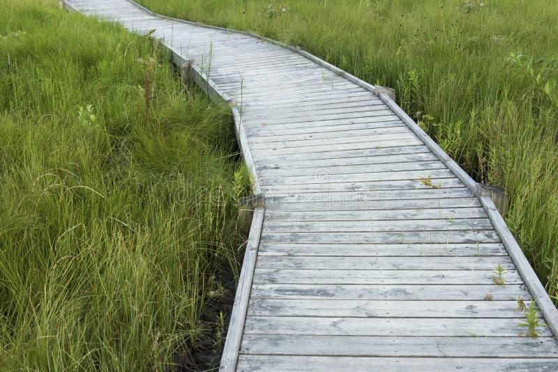 nationalparkbana yosemite arkivbilder